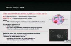 I Combined | Dra. Rita de Cassia C. Guimarães / Dra. Mônica A. O. Santos | Zumbido e Tontura
